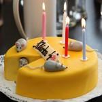 Klárka - oslava 4. narozenin